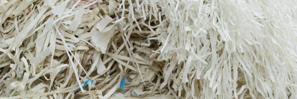58917951 - closeup of shredded paper documents