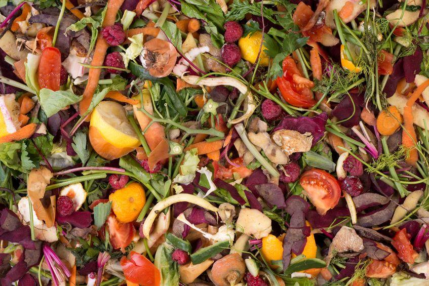 resíduos orgánicos